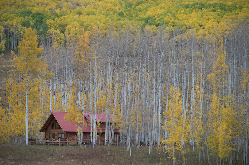 Aspen trees tower above a cabin near Crested Butte, Colorado on Friday, September 22, 2017.