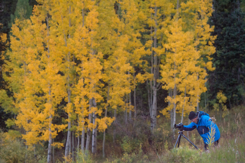 A photographer is backdropped by aspen trees showing their fall colors on the summit of Kebler Pass near Crested Butte, Colorado on Friday, September 22, 2017.