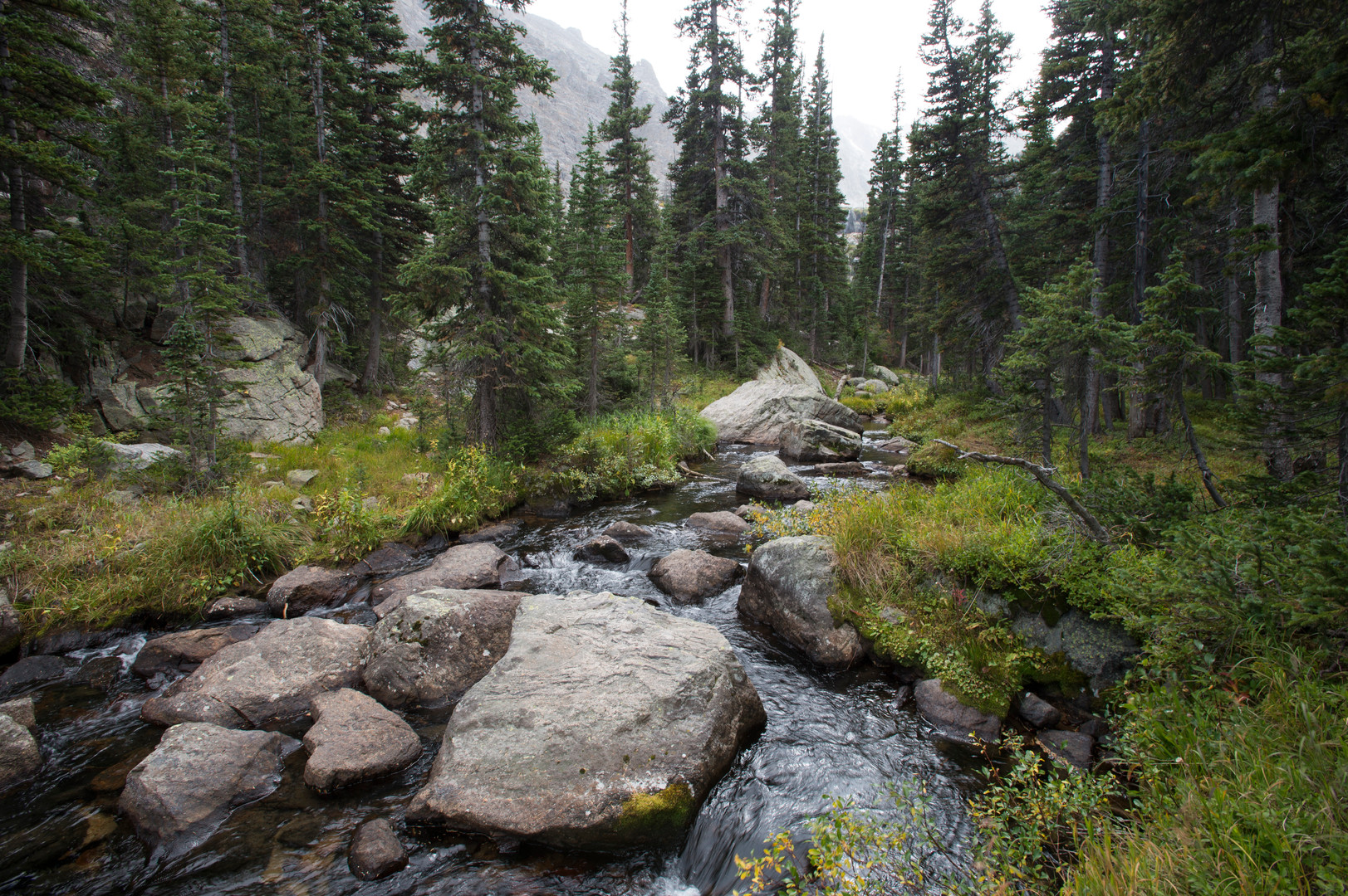 Icy Brook flows near The Loch in Rocky Mountain National Park Wednesday, September 16, 2015. The stream can be viewed in route to Sky Pond.