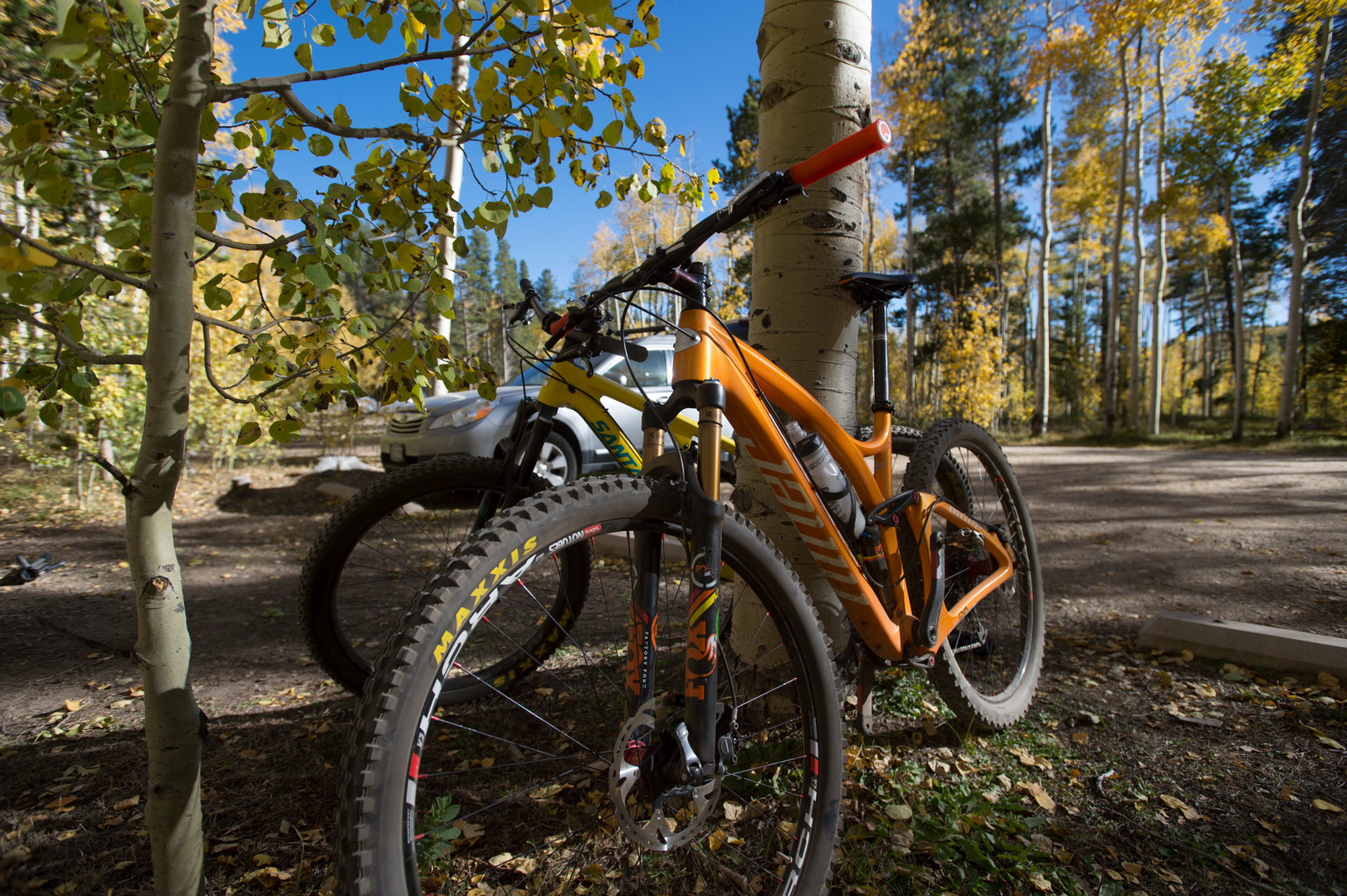 A pair of mountain bikes match the colors of aspen trees as they show off their fall colors near Kenosha Pass on Thursday, September 21, 2017.