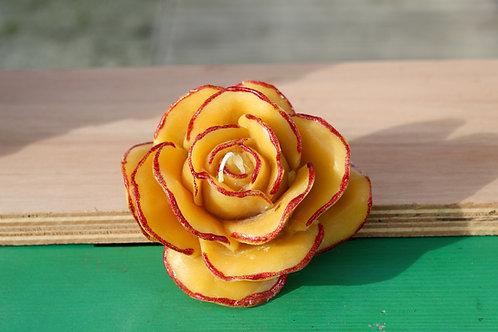 Bougie Rose