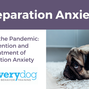Separation Anxiety- Beyond the Pandemic