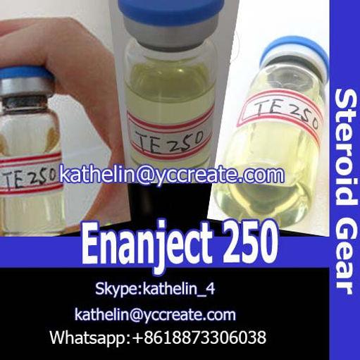 Steroid Oil Enanject 250 Testosterone Enanthate 250 Test E Whatsapp
