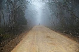 fog-687254_640pix.jpg