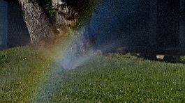 sprinkler-rainbow uncopyrighted.jpg