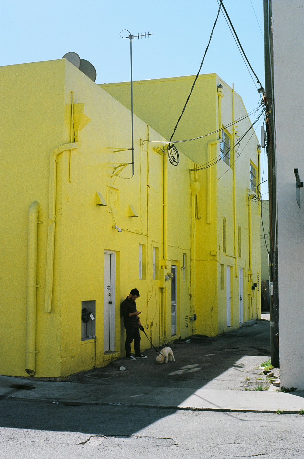 Maisons jaunes