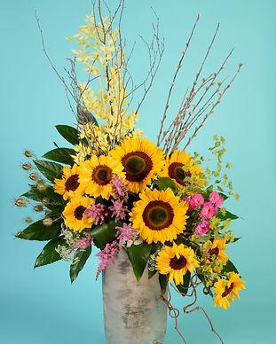 6 Sunflower Sensation.JPG