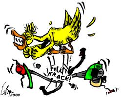 Quand Vieux-Tonton sort ses expressions de derrière les fagots - Entre-deux-Mers, 3 janvier 2020
