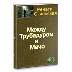 Роман 2 дизайн Между Трубадуром и Мачо.p