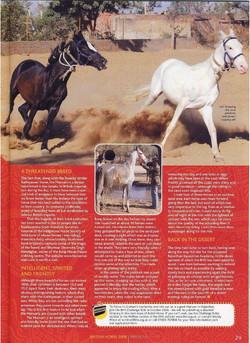 British Horse Society 2008