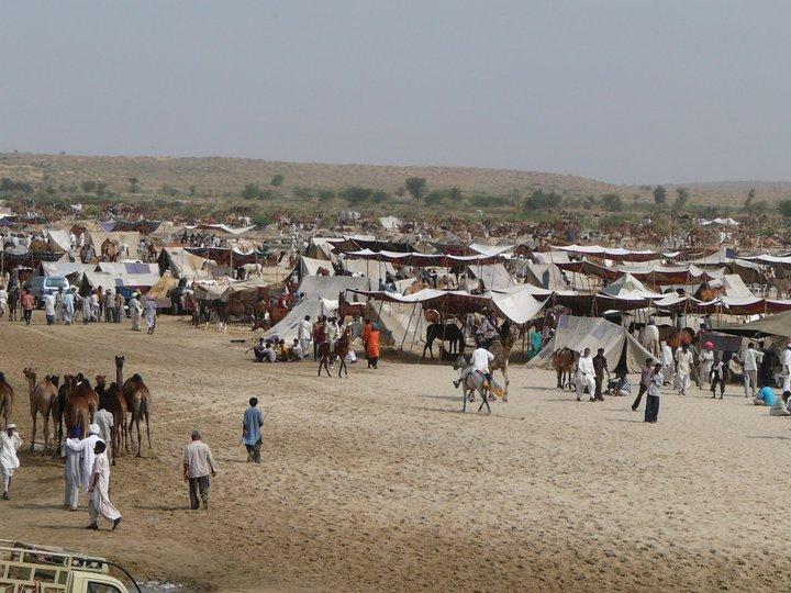 Balotra Fair 2010