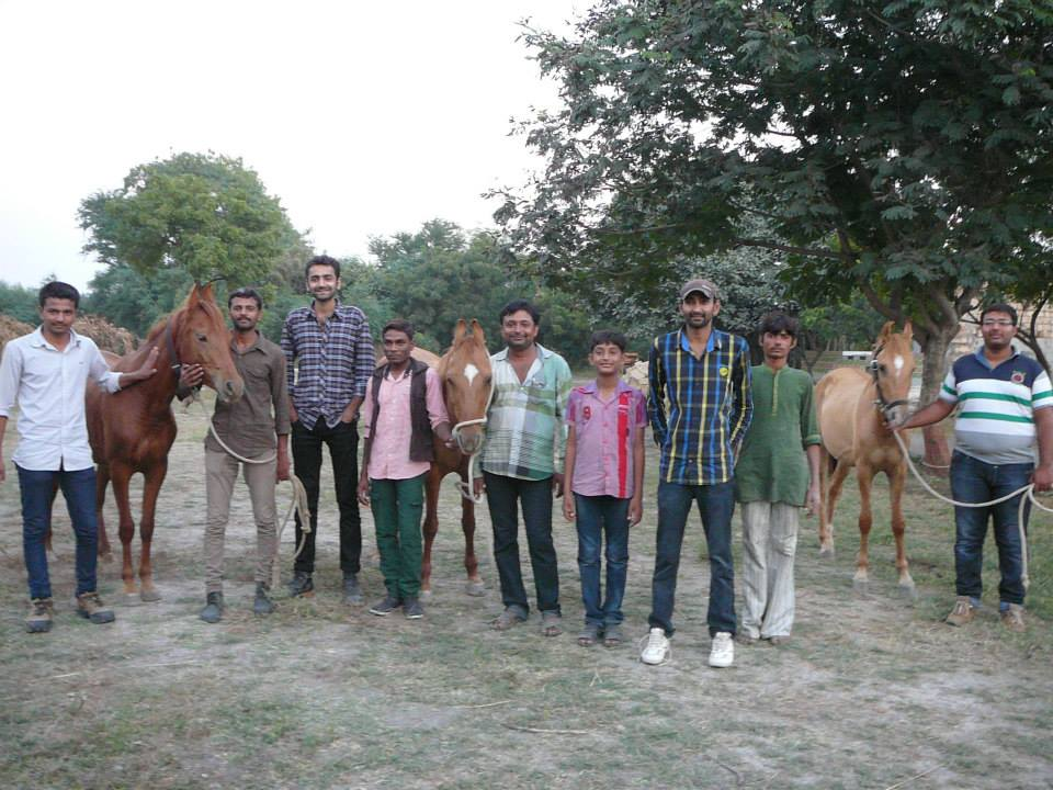 Students after trotting up practice