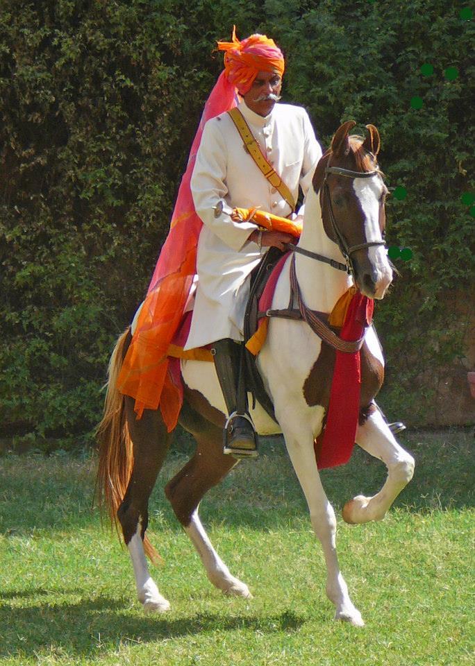 Marwari mare Shanti and Kr.RSDundlod