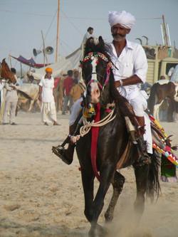 Balotra Fair. Pic: C Moorey