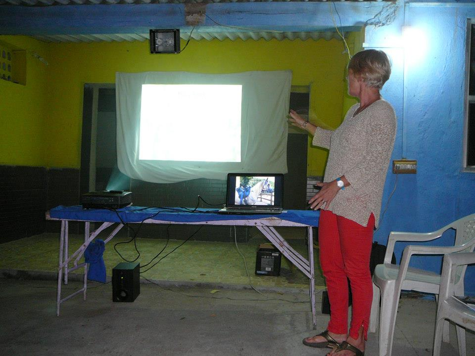 Evening educational videos