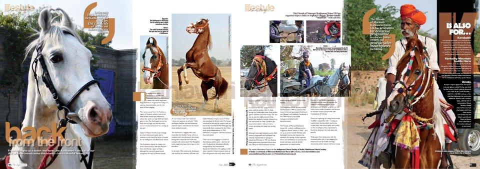 The Equestrian 2012
