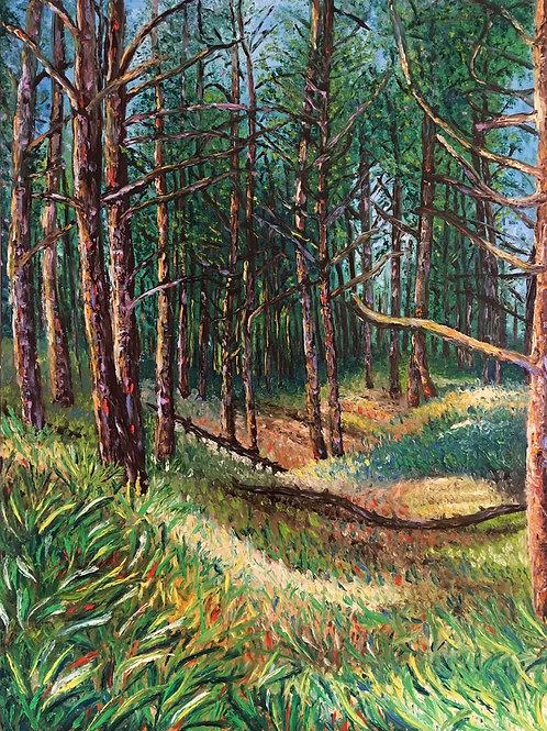 Holkham's Forest