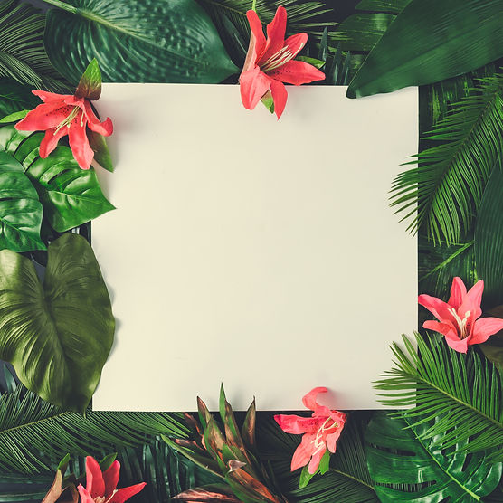 Creative nature layout made of tropical