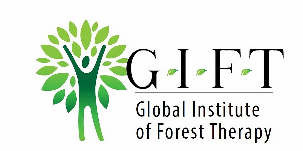 Introduction to Forest Therapy Workshop