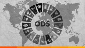 Cooperativismo y ODS ¿falta de acción o comunicación?