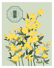 迎春-新画的.jpg