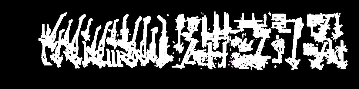 白色草图.png