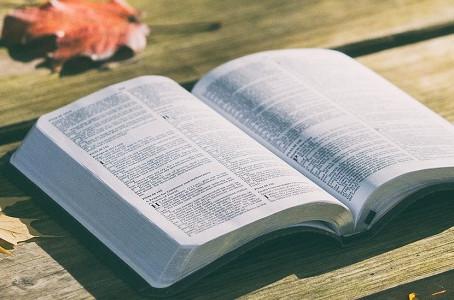 Satınalmaya dair kitab tövsiyələri