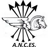 A.N.C.ES..jpg