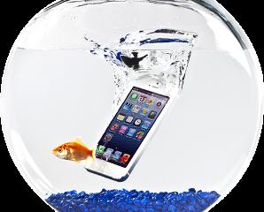 Smartphone caduto in acqua ?