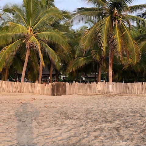 Beachfront Casa Don Pepe.png