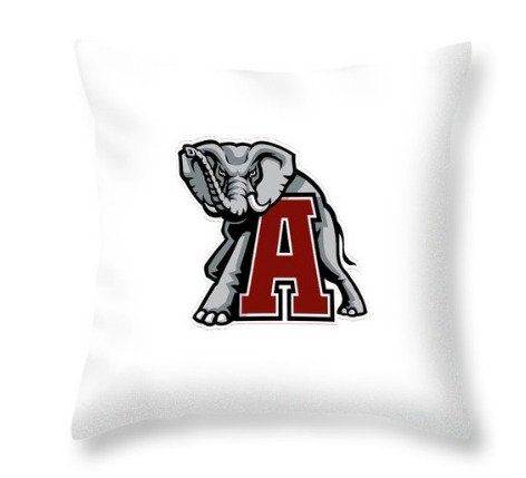 Throw Pillow #68
