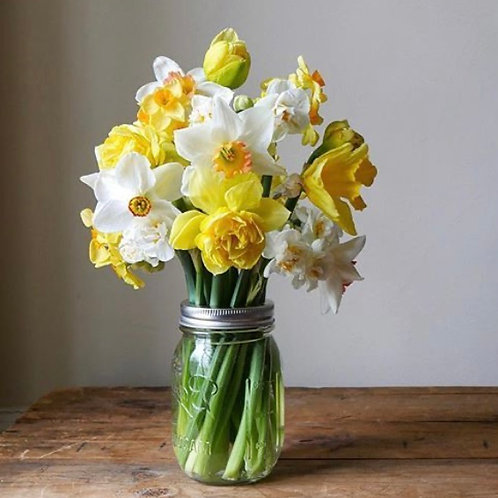 Spring Cut Flowers Subscription (4 weeks)
