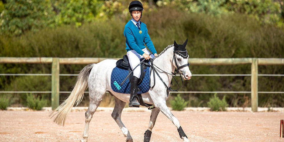 Dressage and Showjumping Day