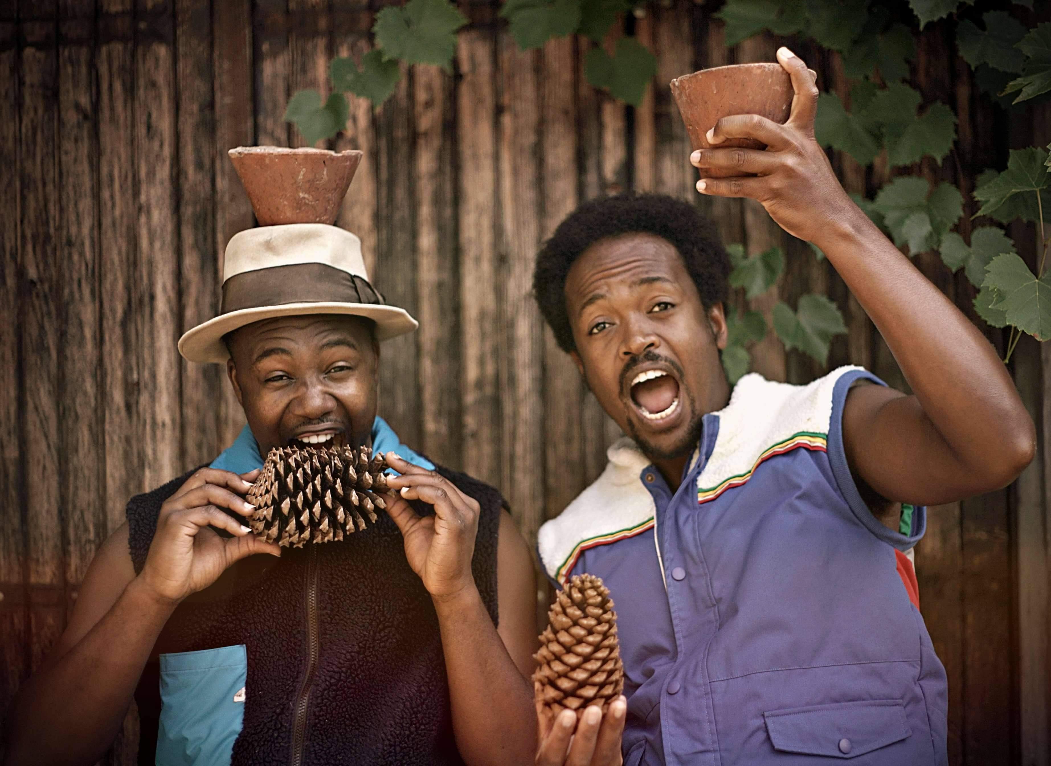 Les Afrolandais