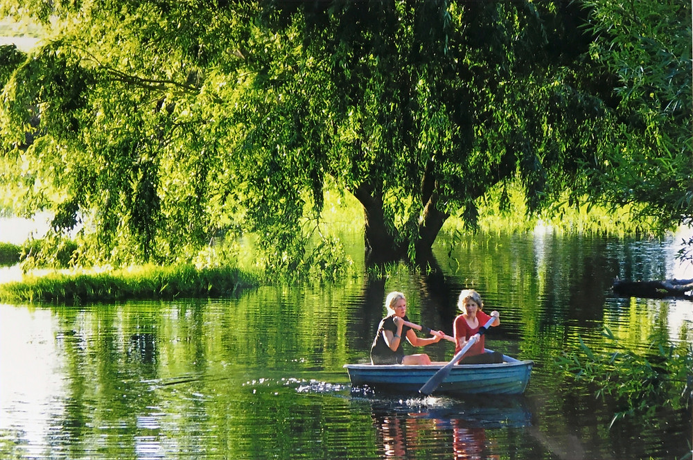 Two people in blue rowing boat passing under a giant willow tree.