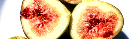 A cut fig, showing hundreds of red seeds within.