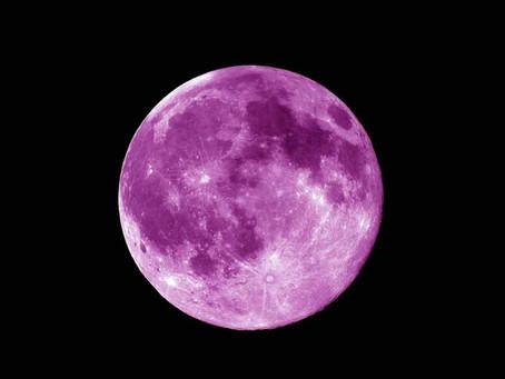 Purple Moon excerpt