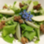 Taste Sense Salad