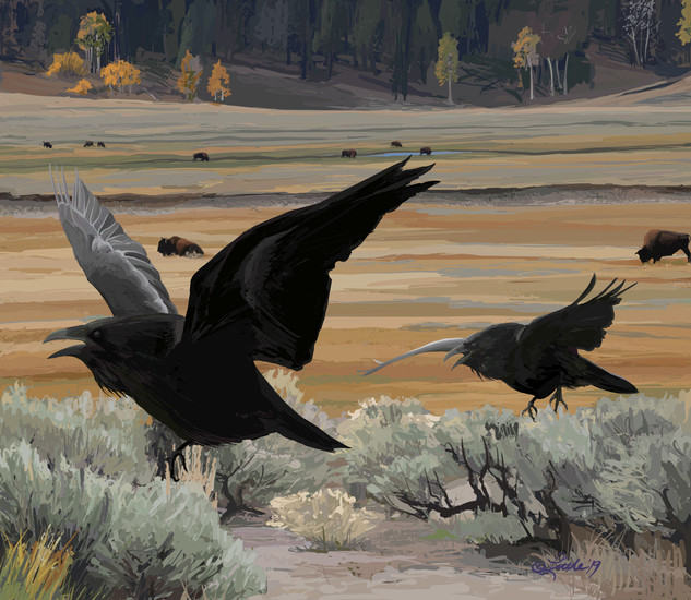 Lamar Valley Autumn Raven Chase