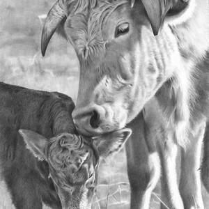 Mama's Love