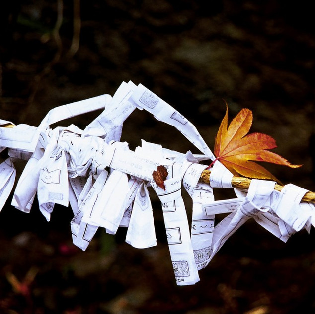 Paper Wishes, Nikko