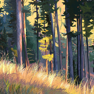 Fall Alpenglow Trees and Grasses