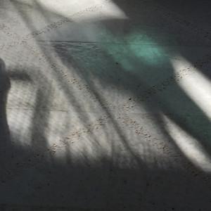green reflection on floor