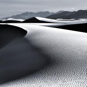 Dunes No. 23