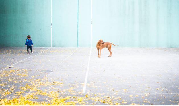 Boy & Dog, NYC