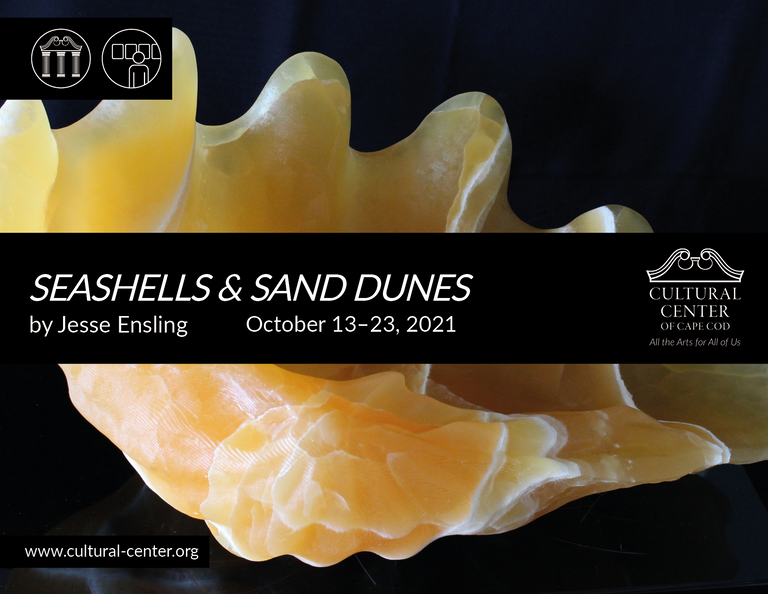 SEASHELLS_AND_SAND_DUNES.png