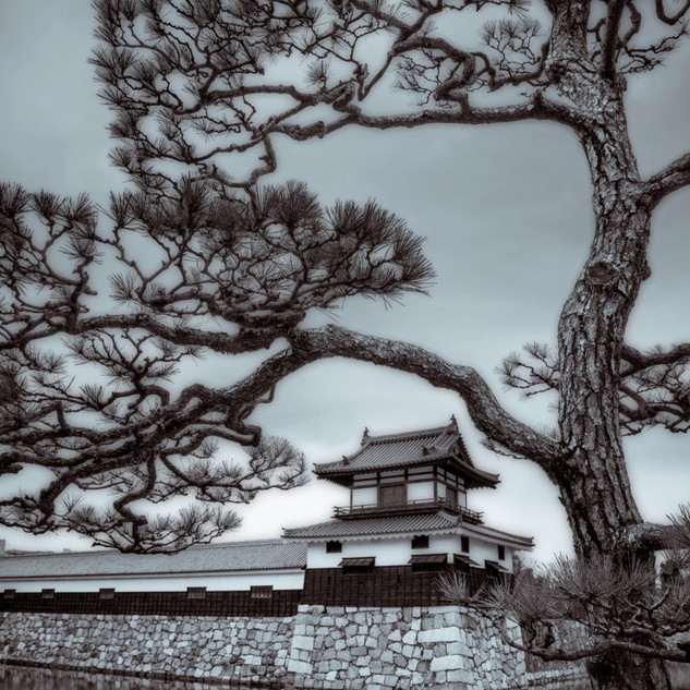 Third Place - Hiroshima Castle