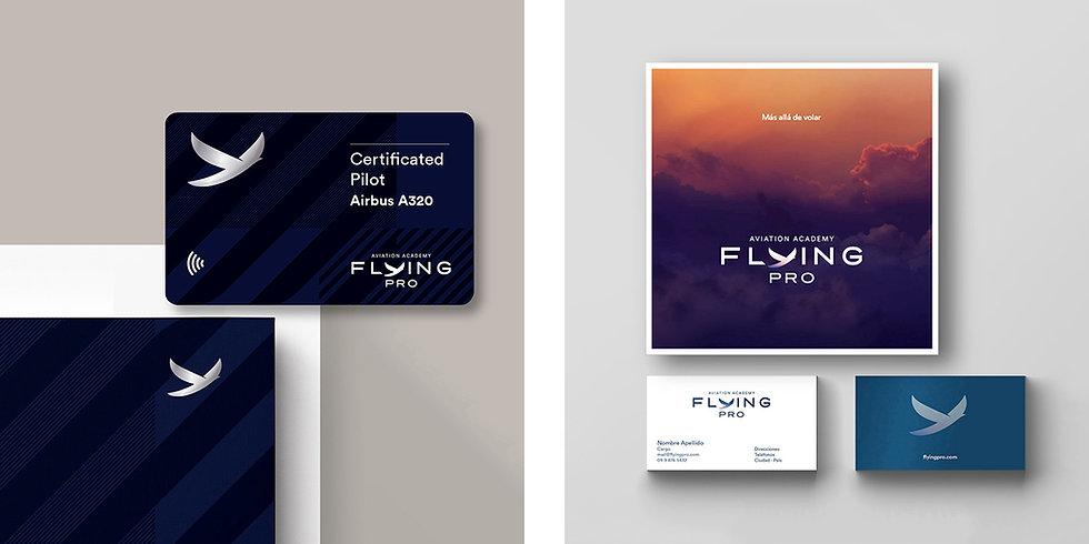 FlyingPro3.jpg