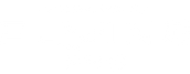 Logo_flyingpro.png