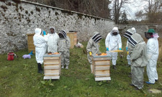 Peebleshire Beekeepers